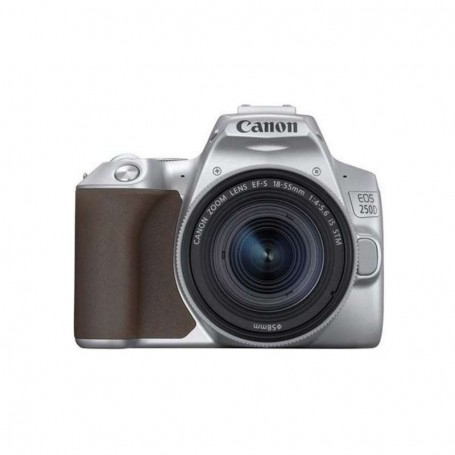 Canon EOS 250D + 18-55mm f / 4.0-5.6 IS STM (Silver)