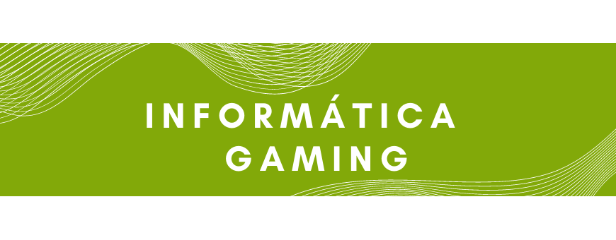 Computer and gaming