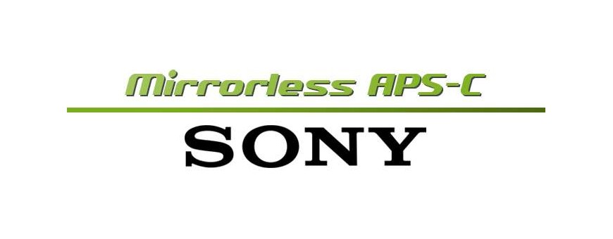 Sony Mirrorless APS-C