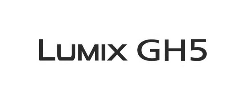 All the possibilities for the Panasonic GH5
